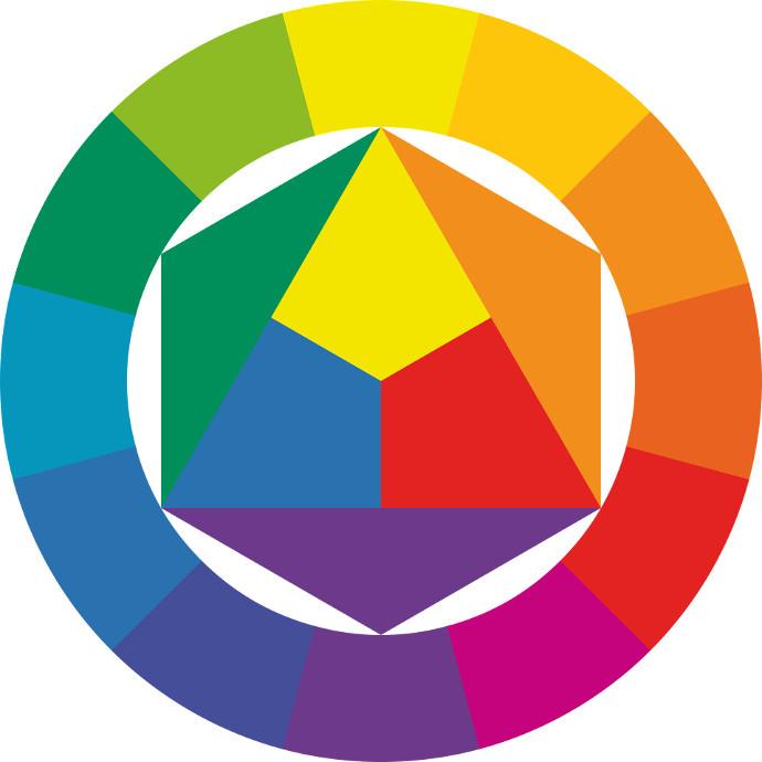 Come Abbinare I Colori Junglam